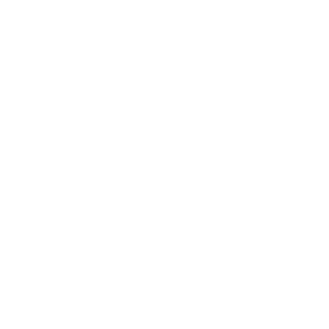 Fit Spirit logo